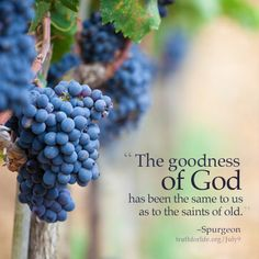God loves You! Bible Verses Quotes, Book Quotes, Christian Soldiers, Christian Images, Christian Faith, Spurgeon Quotes, Quality Quotes, Word Of Faith, God Loves You