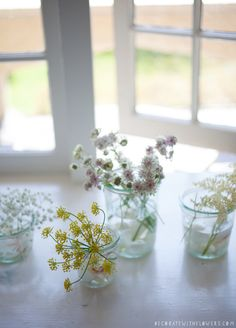 delicate #flowers