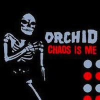 Orchid Chaos Is Me