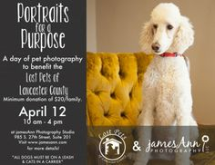 Portraits for a purpose Lost Pets of Lancaster County jamesAnn Photography www.jamesann.com
