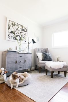 A dog friendly office space // neutral colors // modern design // interiors