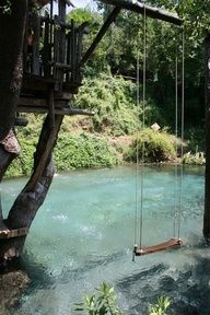 swimming pool made to look like a river with a treehouse and swing