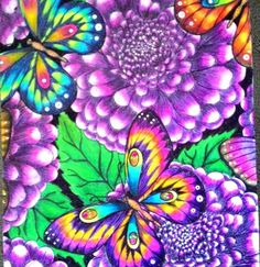 Butterfly Coloring Pages by @anaclaudia.souto