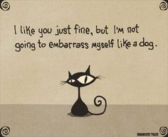 I like you just fine, but I'm not going to embarrass myself like a dog. by Marcus Connor, Brainless Tales Pretty Cats, Beautiful Cats, Crazy Cat Lady, Crazy Cats, I Love Cats, Cool Cats, Cat Quotes, Cat Sayings, Here Kitty Kitty