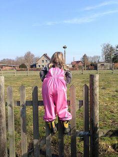 Der Storch ist wieder in Landsdorf gelandet. Sehr zur Freude der Kinder.