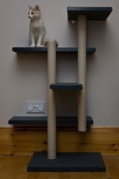 Wall-mount DYI cat tree. The columns are made of cardboard