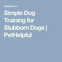 Simple Dog Training for Stubborn Dogs | PetHelpful