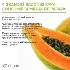 Protege tu sistema digestivo y depura el hígado incluyendo semillas de papaya machacadas para condimentar ensaladas Cantaloupe, Health Tips, Fruit, Healthy, Green, Natural, Juices, Food Items, Salads