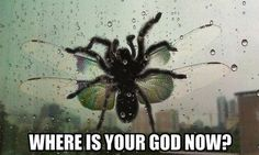 NOOOOOOOOOPE. NOPE. NOPE NOPE NOPE NOPE. | 15 Things That Will Make You Say NOPE