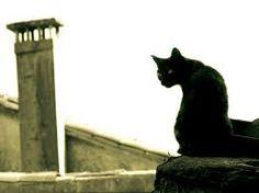 silueta de gato acostado - Buscar con Google
