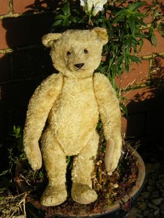Beautiful and rare to find, old silk plush Steiff bear with blank button in ear. In very good condition amazing bear very pretty. Old Teddy Bears, Antique Teddy Bears, Steiff Teddy Bear, Teddy Bear Toys, Teddy Bear Shop, Love Bears All Things, Charlie Bears, Bare Bears, Old Toys