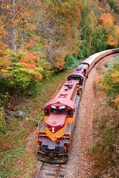 The Great Smoky Mountains Railroad in Bryson City has the perfect way to see the fall colors! One of the best train rides in the country, a must see if you are in the area Train Tracks, Train Rides, Locomotive, Simplon Orient Express, Bryson City, Bonde, Train Pictures, Old Trains, Great Smoky Mountains
