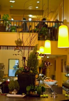 Decorative Plants At Cafe Venetia 419 University Ave Palo Alto Plant Decor