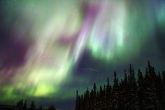 Northern Lights, Schwatka Lake, Yukon, Canada