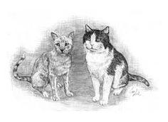 Risultati immagini per lupi disegni a matita