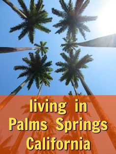 In which of these 2 best neighborhoods in Palm Springs would you most enjoy living? http://lifequalityexaminer.com/whats-it-like-to-live-in-palm-springs/