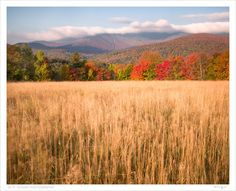 M.P. Hogan Photography...Warren, Vt.