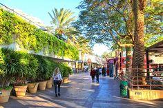 Untitled Eilat, Street View