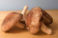Shiitake-Mushrooms-Help-Fight-Obesity