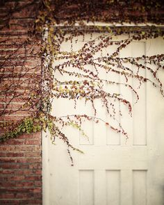 Shabby Chic Autumn Decor Vintage Cottage Door by LisaRussoFineArt, $30.00