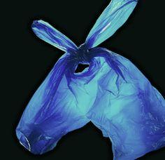 LIGHT HORSE // DENNIS PEDERSEN