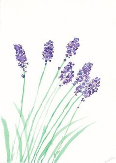 I love the idea of herbs and flowers for the nursery. SALE Lovely Lavender Watercolor Painting Print by Littlecatdraw Simple Watercolor Flowers, Easy Flower Painting, Easy Watercolor, Simple Flowers, Watercolor Cards, Watercolour Painting, Painting & Drawing, Watercolours, Watercolor Pencils