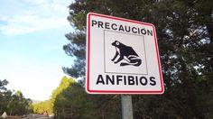 Senderismo: Ruta hacia el Nacimiento del Río Mundo Signs, Trekking, Birth, Paths, Shop Signs, Sign, Dishes