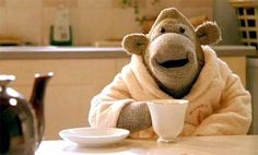 Monkey - PG Tips