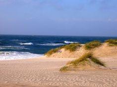 Strand und Dünen auf Norderney