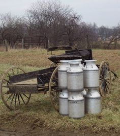 Holmes Co. Hack buggie and milkcans. The Swartzentruber Amish are not allowed to use automatic milking machines.