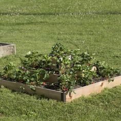 4x8 Composite Raised Bed Frame It All Gardens Raised beds and We