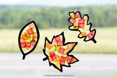 LEAF SUNCATCHERS 🍂🍁🍂- this is one of our favorite fall crafts. You just need contact paper or self-adhesive laminating paper, construction… Easy Fall Crafts, Fall Crafts For Kids, Toddler Crafts, Fun Crafts, Paper Crafts, Craft Activities For Kids, Preschool Crafts, Daycare Crafts, Craft Ideas