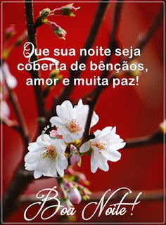 Flores e Frases: QUE SUA NOITE SEJA COBERTA DE... Good Night Qoutes, Jesus Prayer, Messages, God, Gifs Lindos, Facebook, Erika, Gallery, Plants
