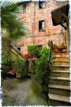 courtyard with potted plants and trees... lovely