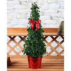 Products in Wreaths & Greenery, Decorative Accessories, Outdoor Living