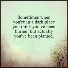 Sometimes when you're in a dark place, you think you've been buried, but actually you've been planted.
