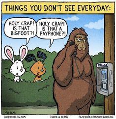 Phony Bigfoot sighting .