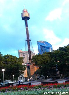 Go up Sydney Tower - 33 Things to Do in Sydney, Australia