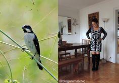 Look inspirado no Bigodinho. Veja mais acessando http://bloganimalchic.com/2015/04/01/o-frio-ta-chegando/ #Bigodinho