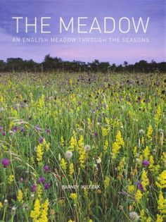 The Meadow: An English Meadow Through the Seasons - 0711232725 9780711232723: NHBS: Barney Wilczak