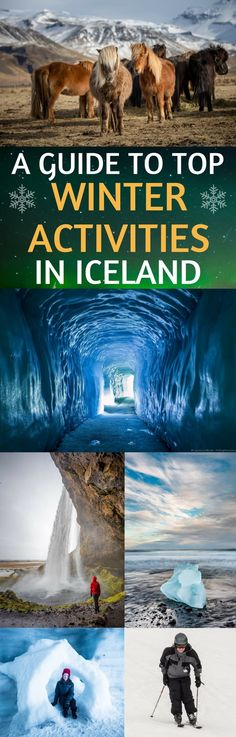 A guide to 18 top winter activities in Iceland! Traveling to Iceland in winter can be a fantastic experience as there are fewer crowds and beautiful winter landscapes. You also have the chance to see the Northern Lights, go skiing, dogsledding, ice skating, snowmobiling, exploring ice caves, and so much more! #IcelandinWinter #Icelandtravel #Iceland #wintertravel