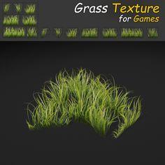Grass_07