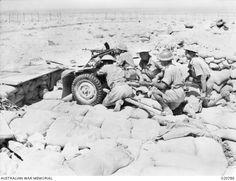 TOBRUK, LIBYA. 1941-09-11. A GUN CREW FROM THE 3RD ANTI-TANK REGIMENT IN POSITION AT POST R 27  (Australian anti-tank unit) Australian Desert, Erwin Rommel, Italian Army, Ww2 Pictures, Afrika Korps, War Image, Military Modelling, Big Guns, North Africa