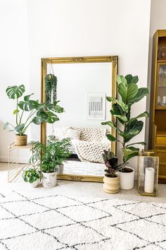 Living Room Plants Decor, Living Room Mirrors, House Plants Decor, Plant Decor, Lounge Mirrors, Boho Chic Living Room, Boho Room, My Living Room, Living Room Apartment