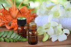 Bio Alter Ego: Il primo post.....  Pillole aromatiche