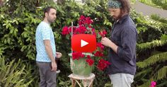 Mom and Her Sister Had a Conversation…So the Guys Acted It Out – And It's Hilarious! | FaithHub