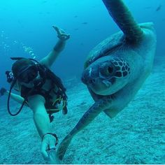 Underwater selfie. Location: Galápagos Islands.