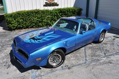 1978 Trans Am Martinique Blue , stunning! Someday I'll have my baby restored and back on the road!