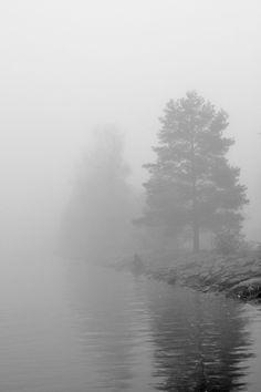 foggy morning  by Jaro Larnos---   .flickr: https://www.flickr.com/photos/jlarnos/