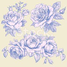 Roses royalty-free stock vector art